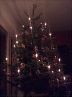 Baum, duh