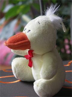 4beinige Ente?