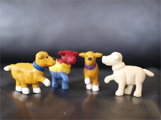 einige kleine Hunde
