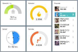 fitbit Web-Dashboard