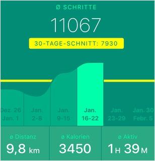 durchschnittlich 11067 Schritte pro Tag